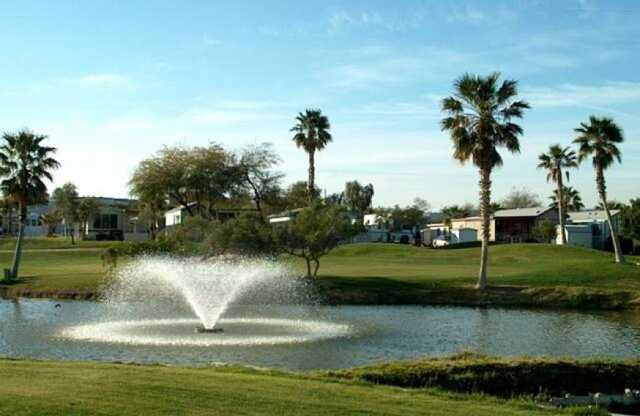 Riverview Rv Resort In Bullhead City