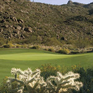 The GC at Dove Mountain - Tortolita