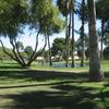 Sun Lakes Country Club