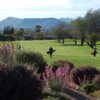 A view from Rio Verde Country Club