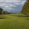 A view of a fairway at Alta Mesa Country Club.
