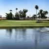 View of a green at Arizona Golf Resort